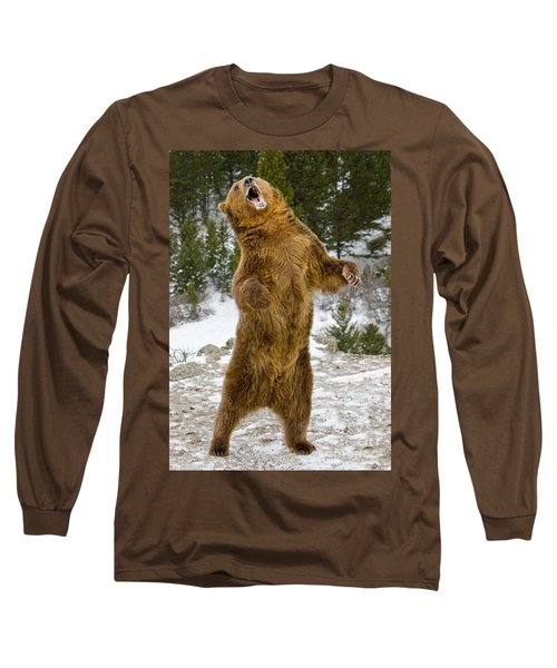 Grizzly Standing Long Sleeve T-Shirt by Jerry Fornarotto