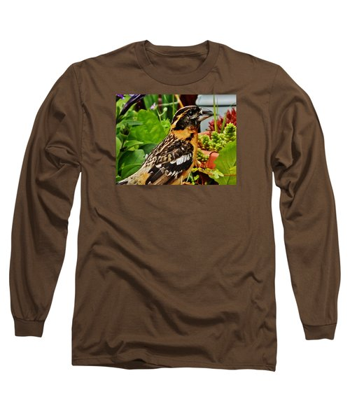 Long Sleeve T-Shirt featuring the photograph Grosbeak Profile by VLee Watson