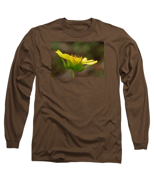 Long Sleeve T-Shirt featuring the photograph Hairy Leafcup by Paul Rebmann