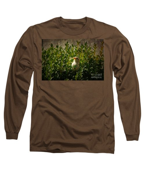 Long Sleeve T-Shirt featuring the photograph Hide And Seek by Mariola Bitner
