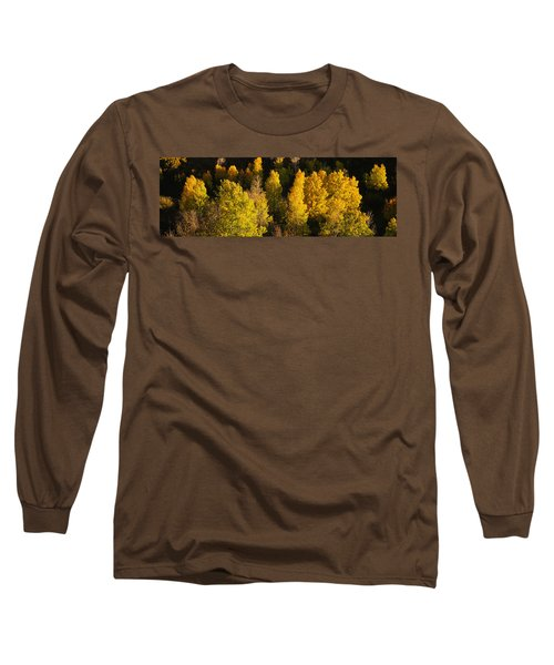 High Angle View Of Aspen Trees Long Sleeve T-Shirt