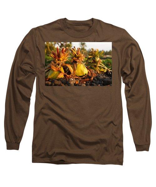 Hookupu At Sunset Long Sleeve T-Shirt by Denise Bird
