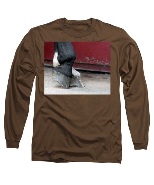 Hooves Long Sleeve T-Shirt by Lisa Phillips