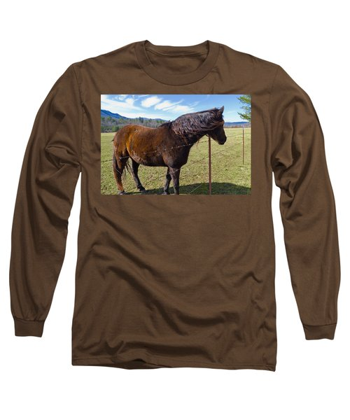 Horse Long Sleeve T-Shirt by Melinda Fawver