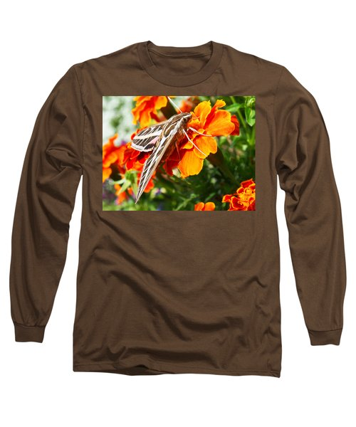 Hummingbird Moth On A Marigold Flower Long Sleeve T-Shirt