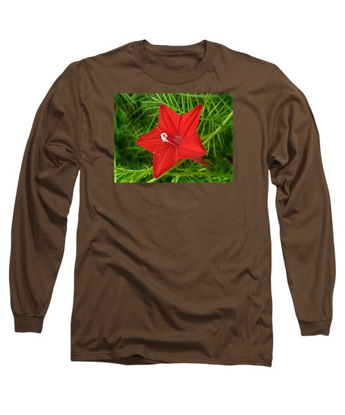 Hummingbird Vine Long Sleeve T-Shirt by William Tanneberger