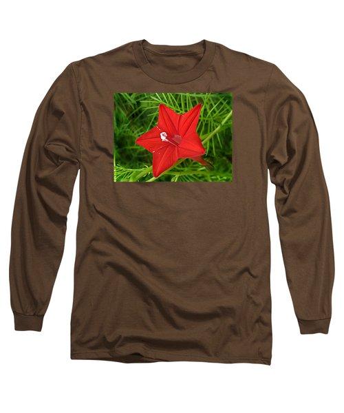 Hummingbird Vine Long Sleeve T-Shirt