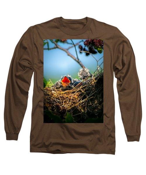 Hungry Tree Swallow Fledgling In Nest Long Sleeve T-Shirt