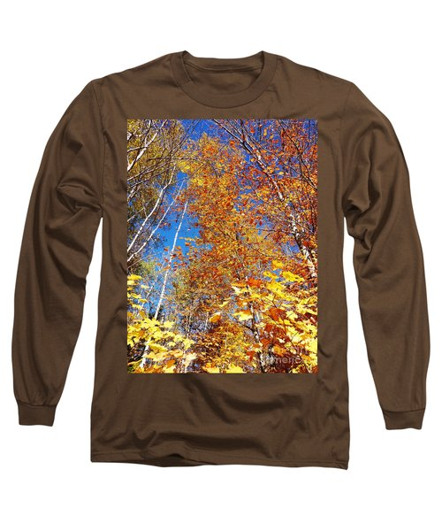 In The Forest At Fall Long Sleeve T-Shirt
