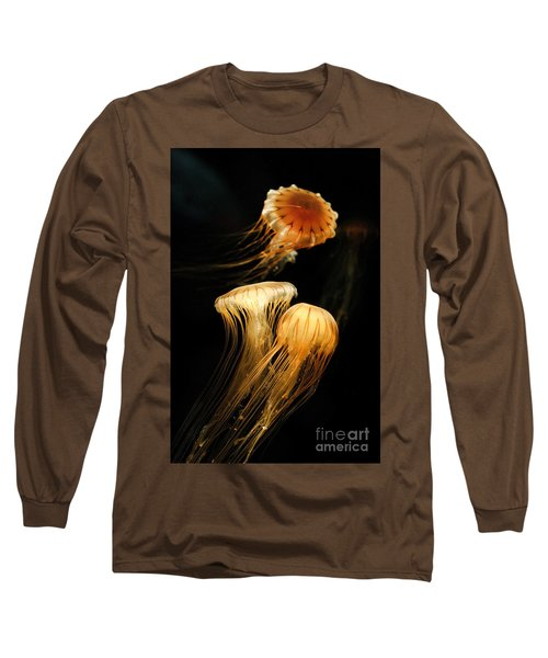 Jellyfish Trio Floating Against A Black Long Sleeve T-Shirt
