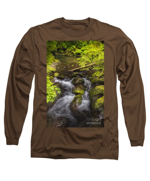 Lake Quinault Creek 2 Long Sleeve T-Shirt by Sonya Lang