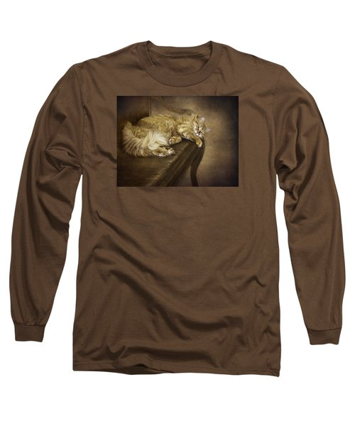 Lazy Cat On A Bench Long Sleeve T-Shirt
