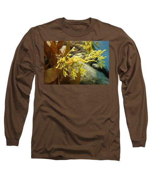 Leafy Sea Dragon Long Sleeve T-Shirt