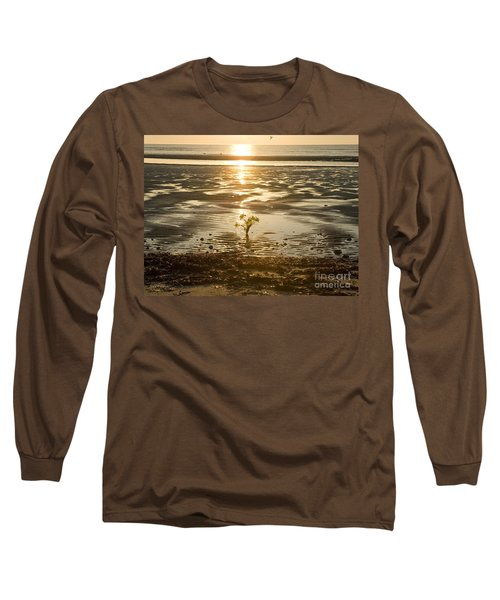 Long Sleeve T-Shirt featuring the photograph Leftover Bouquet by Carol Lynn Coronios