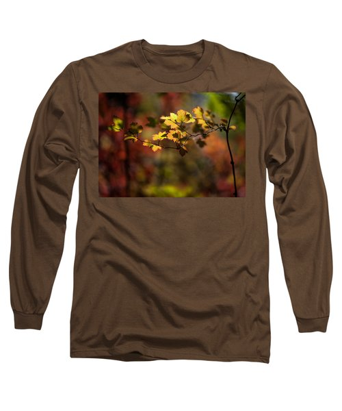 Long Sleeve T-Shirt featuring the photograph Lightly Falling by Aaron Aldrich