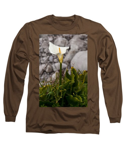 Lone Calla Lily Long Sleeve T-Shirt by Melinda Ledsome