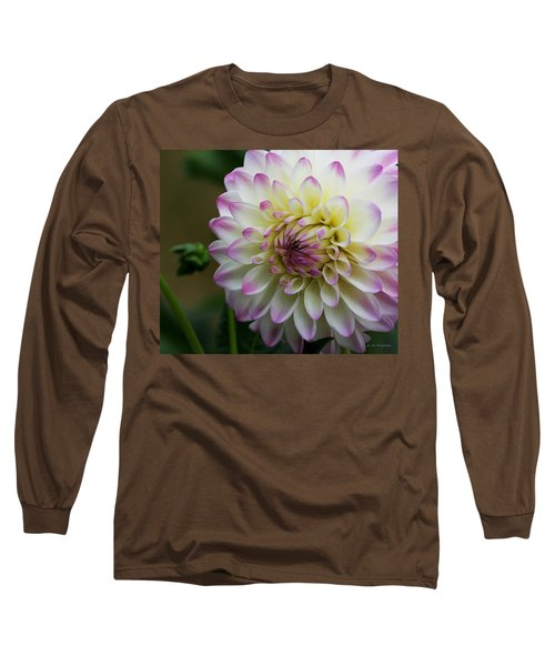 Loving You Long Sleeve T-Shirt by Jeanette C Landstrom