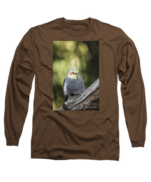 Long Sleeve T-Shirt featuring the photograph Male Cockatiel by Judy Whitton