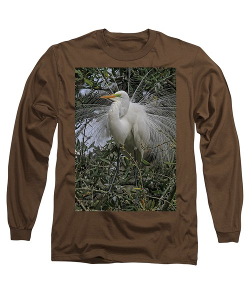 Mating Plumage Long Sleeve T-Shirt
