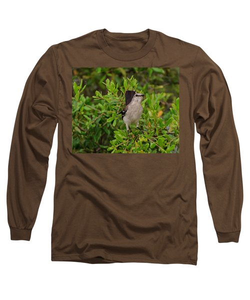 Mockingbird In Tree Long Sleeve T-Shirt