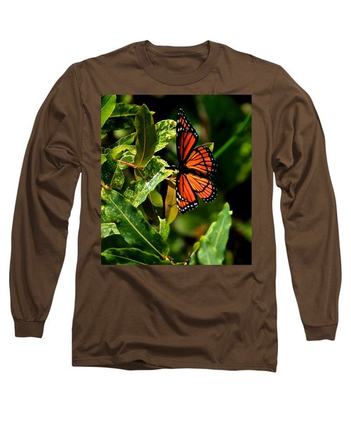 Viceroy Butterfly II Long Sleeve T-Shirt
