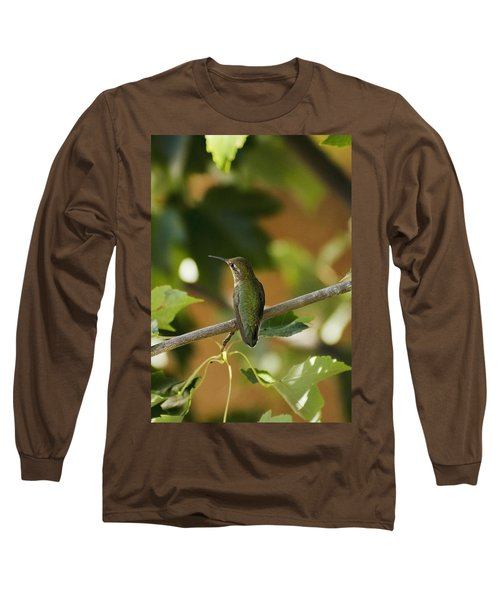My Green Colored Hummingbird 4 Long Sleeve T-Shirt