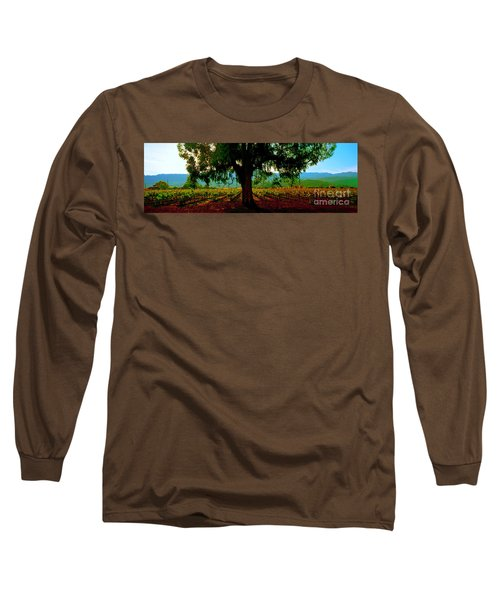 Long Sleeve T-Shirt featuring the photograph Napa Valley Ingenook Winery Roadside by Tom Jelen