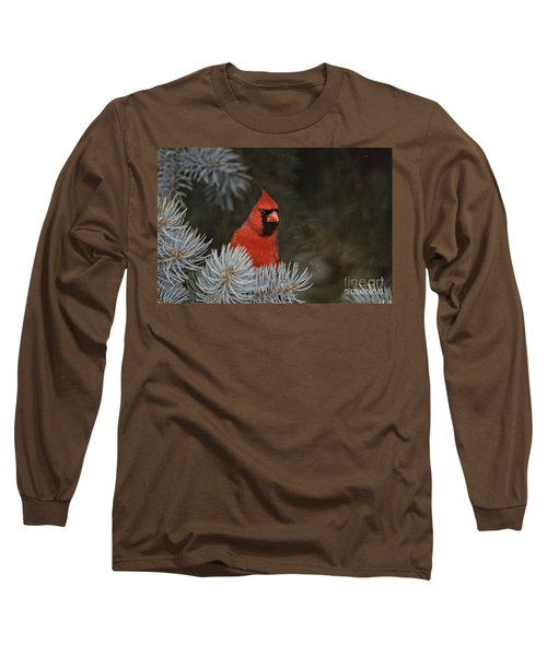 Northern Cardinal In Spruce Tree Long Sleeve T-Shirt