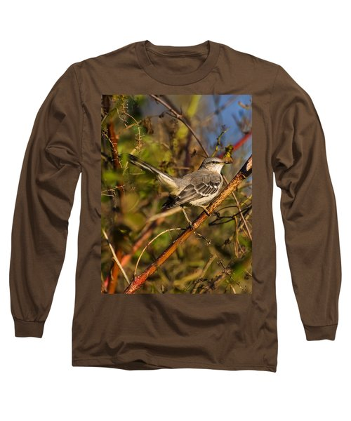Northern Mockingbird Long Sleeve T-Shirt by Chris Flees