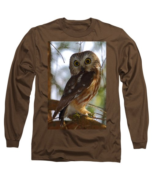 Northern Saw-whet Owl II Long Sleeve T-Shirt