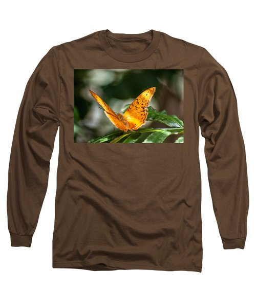 Orange Butterfly Long Sleeve T-Shirt by Ray Warren