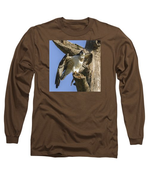 Osprey Pose Long Sleeve T-Shirt by David Lester