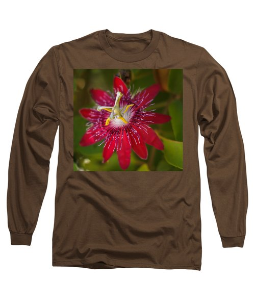 Long Sleeve T-Shirt featuring the photograph Passion Flower by Jane Luxton