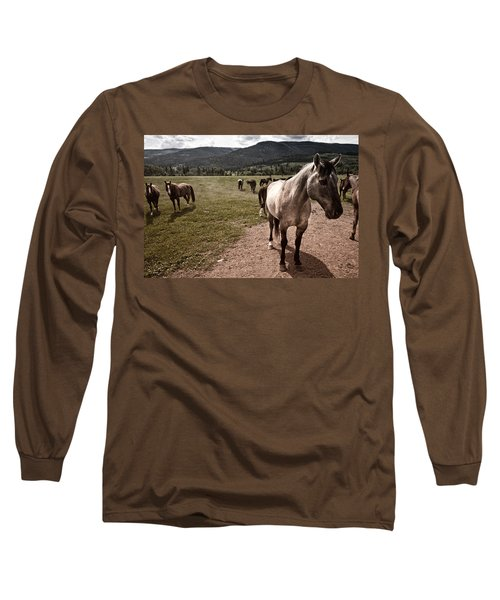 Pay Attention To Me Long Sleeve T-Shirt