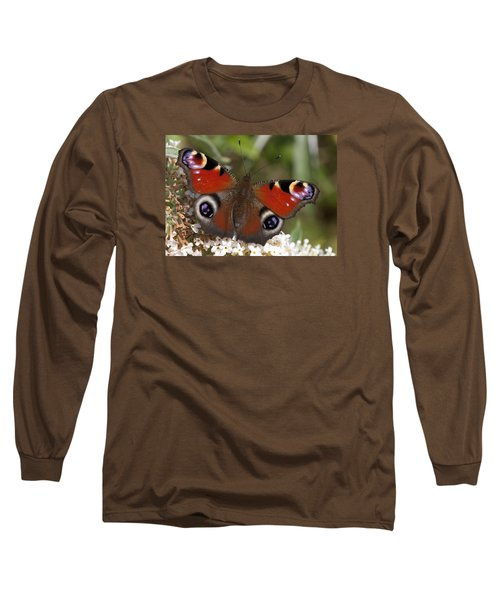 Peacock Butterfly Long Sleeve T-Shirt by Richard Thomas
