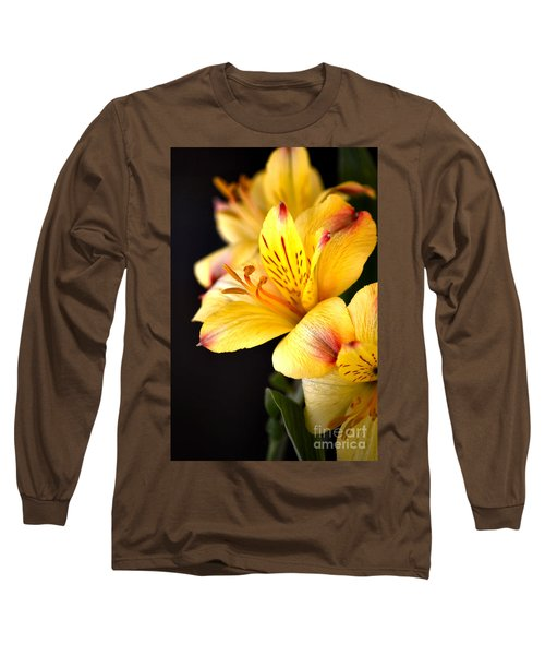 Peruvian Lily Long Sleeve T-Shirt by Deb Halloran