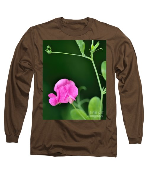 Pink And Green Long Sleeve T-Shirt by David Perry Lawrence