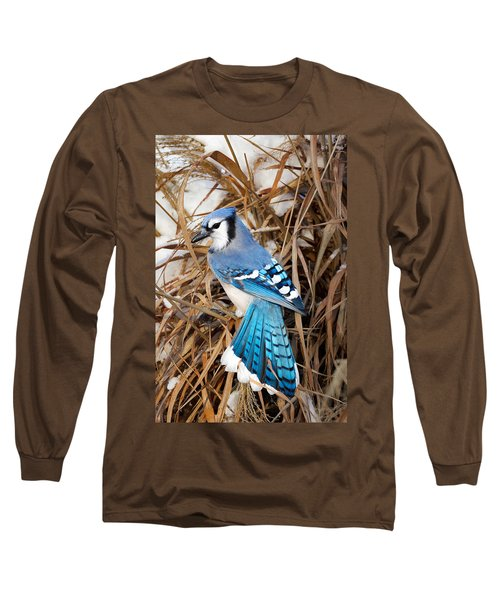 Portrait Of A Blue Jay Long Sleeve T-Shirt by Bill Wakeley
