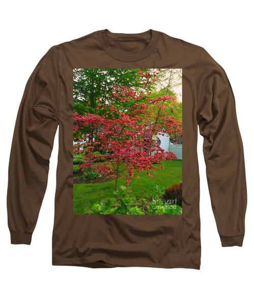 Long Sleeve T-Shirt featuring the photograph Pretty Pink Beech Tree by Becky Lupe