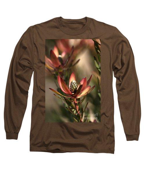 Protea  Long Sleeve T-Shirt by Joy Watson