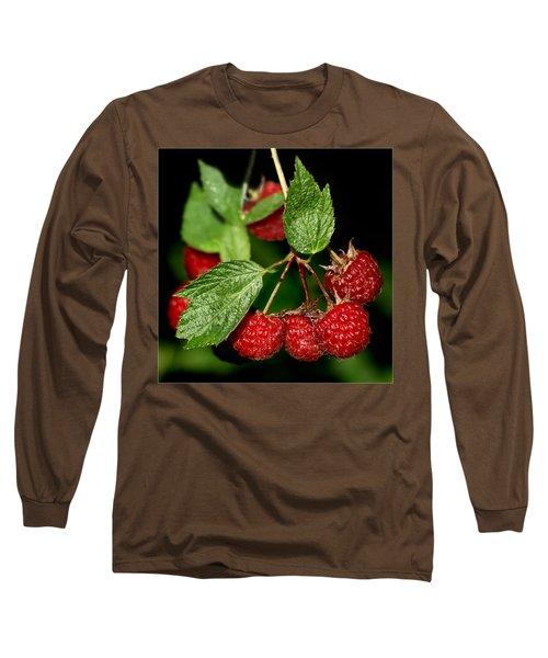 Raspberries Long Sleeve T-Shirt by Nikolyn McDonald