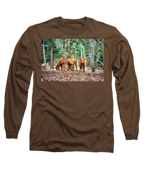 Red Angus Calves Long Sleeve T-Shirt