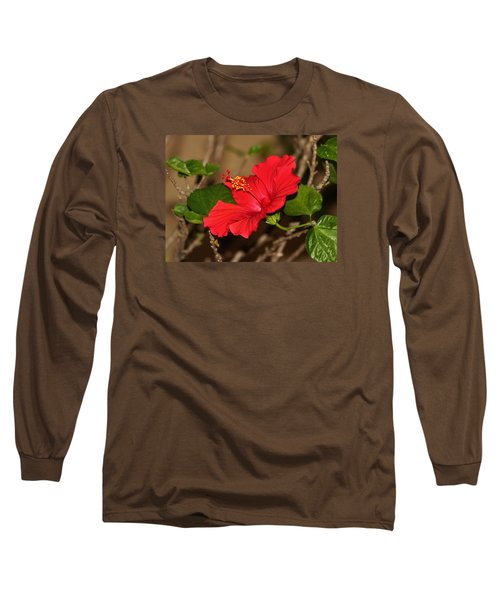 Red Hibiscus Flower Long Sleeve T-Shirt by Cynthia Guinn