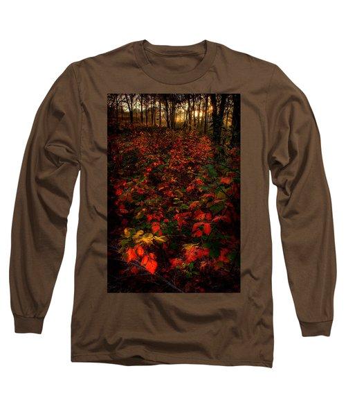 Red Sumac Long Sleeve T-Shirt