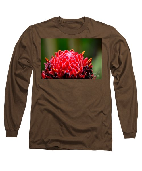 Red Torch Ginger Flower Head From Tropics Singapore Long Sleeve T-Shirt by Imran Ahmed