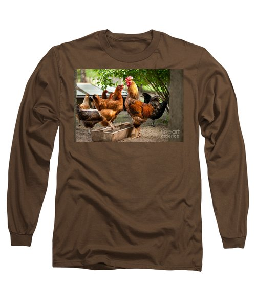 Rhode Island Red Chickens And Wooden Feeder  Long Sleeve T-Shirt
