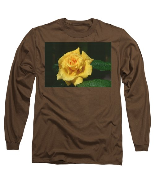 Rose 1 Long Sleeve T-Shirt by Andy Shomock