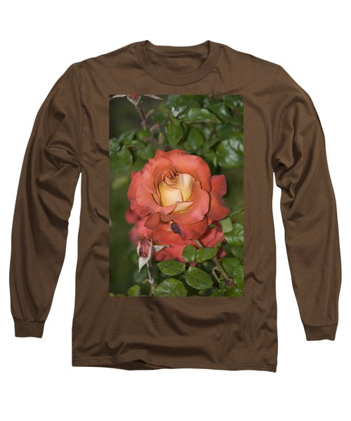 Rose 6 Long Sleeve T-Shirt by Andy Shomock