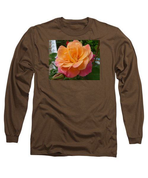 Long Sleeve T-Shirt featuring the photograph Rosemary And Thyme by Lingfai Leung