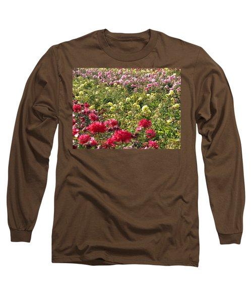 Roses Roses Roses Long Sleeve T-Shirt by Laurel Powell